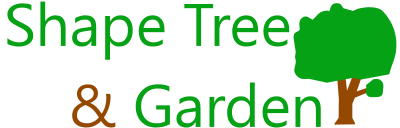 Shape tree and Garden Logo